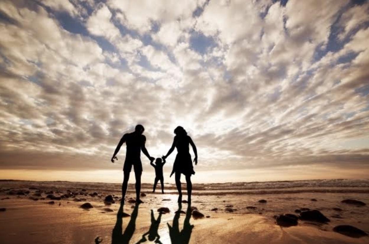 family mediation process